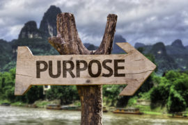 From Profit to Purpose — A Life-Changing Proposition